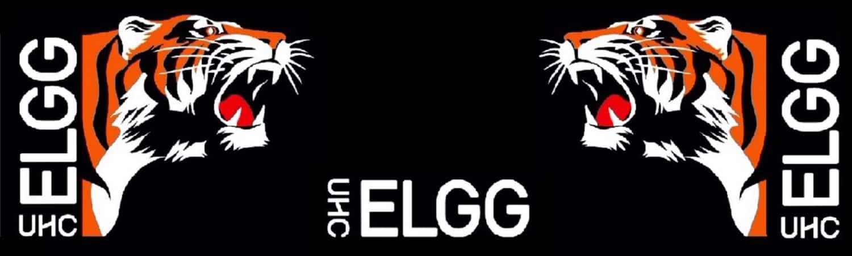 Unihockey Club Elgg